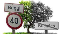 Bugyi községben ültettek fákat, mert Budaörsön nem találtak pótlásra alkalmas területet