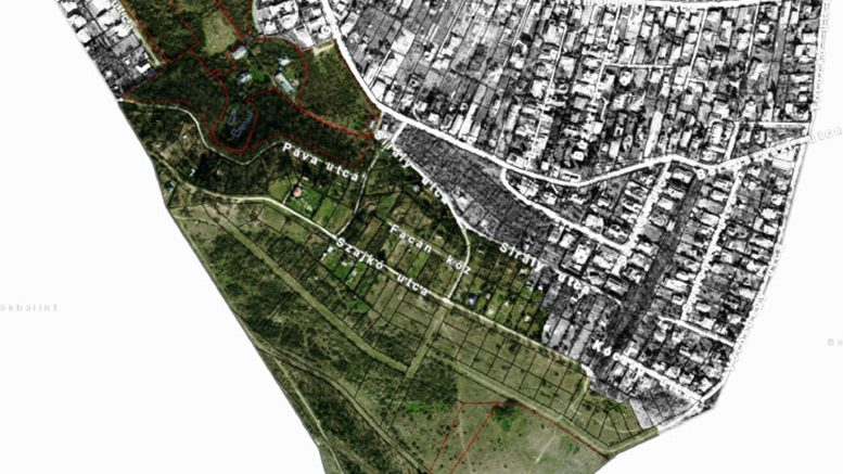 Kamaraerdő Tétényi-fennsík Akcióterület