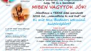 Ki mit tesz Budaörs sokszínű kultúrájáért? - Még lehet jelentkezni a budaörsi Ki mit tud?-ra