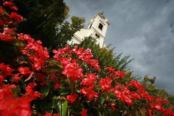 Június végéig nyújtható be a Tiszta, virágos Budaörsért pályázat