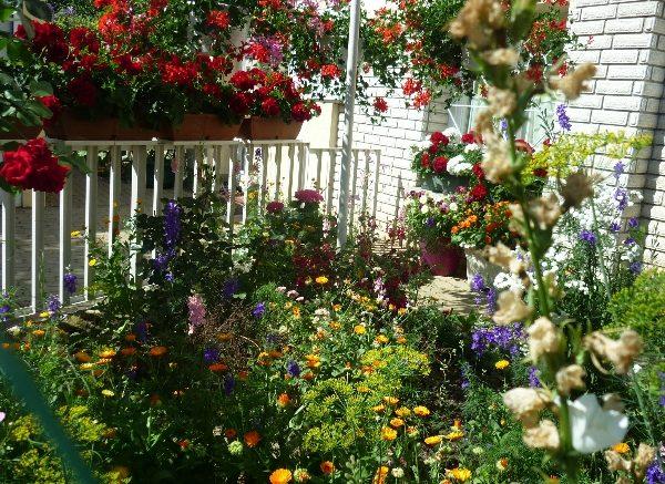 Júliusban lehet nevezni a Tiszta, virágos Budaörsért - 2019 pályázatra